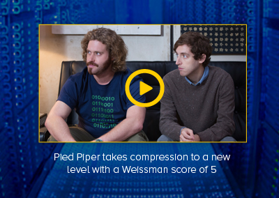 Pied Piper Homepage